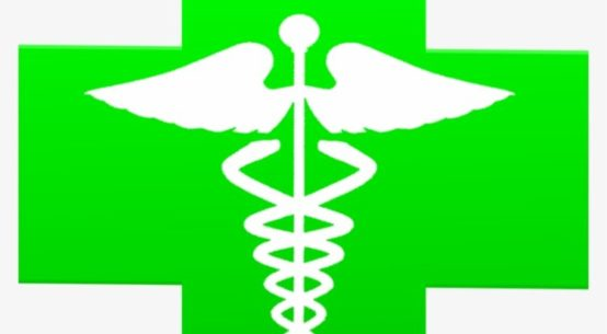 A green cross with a doctor's staff with snakes