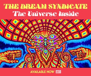 The Dream Syndicate The Universe Inside Available now on Anti Records