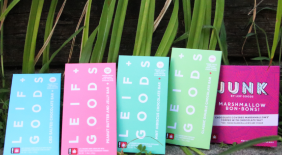 A selection of different cannabi sinfused chocolate bars are artsy arraigned against a plant as a backdrop